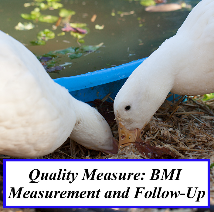 Quality Measure: BMI Measurement and Follow-Up
